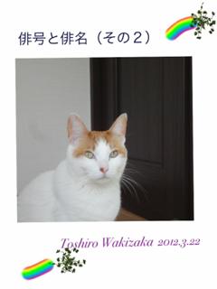 image-20120321192234.png