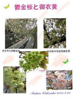 image-20120422182233.png