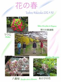 image-20120430111100.png