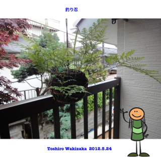 image-20120522202157.png