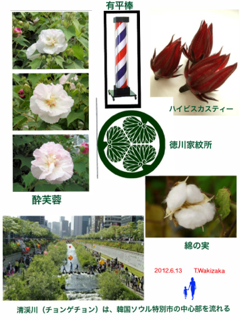 image-20120612163111.png
