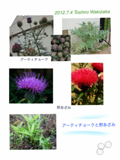 image-20120704112457.png