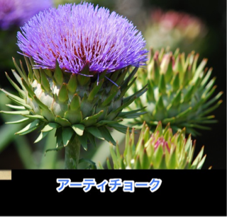 image-20120704112542.png