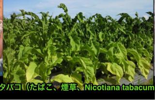 image-20120712164504.png